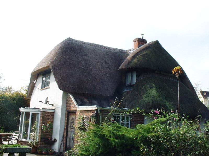 Freeman roof 1