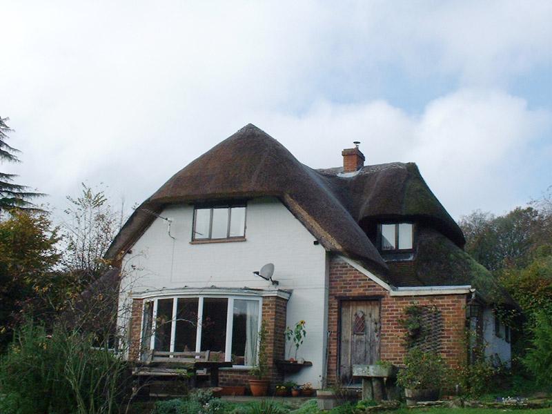 Freeman roof2