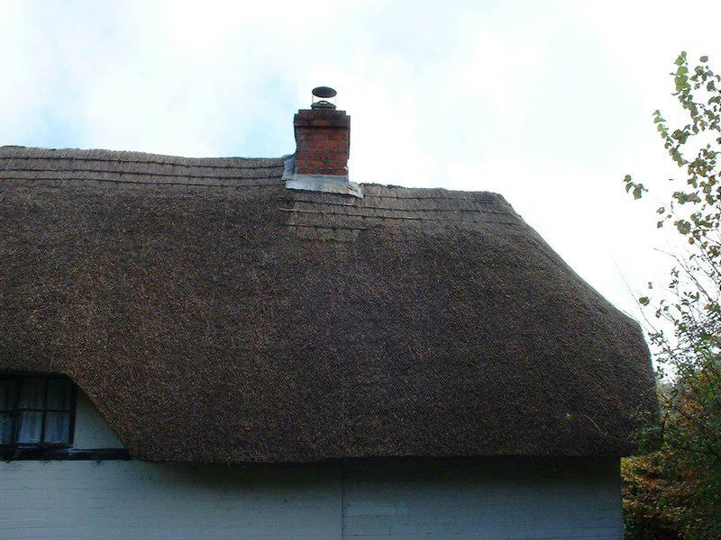 Freeman roof3-1