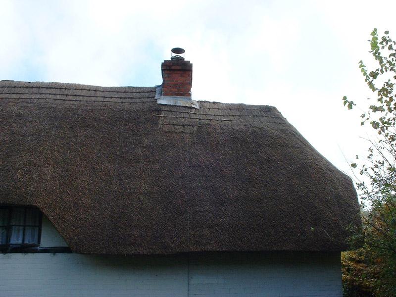 Freeman roof3