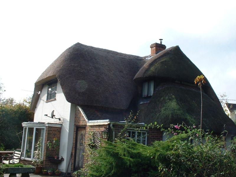 M Freeman roof 001