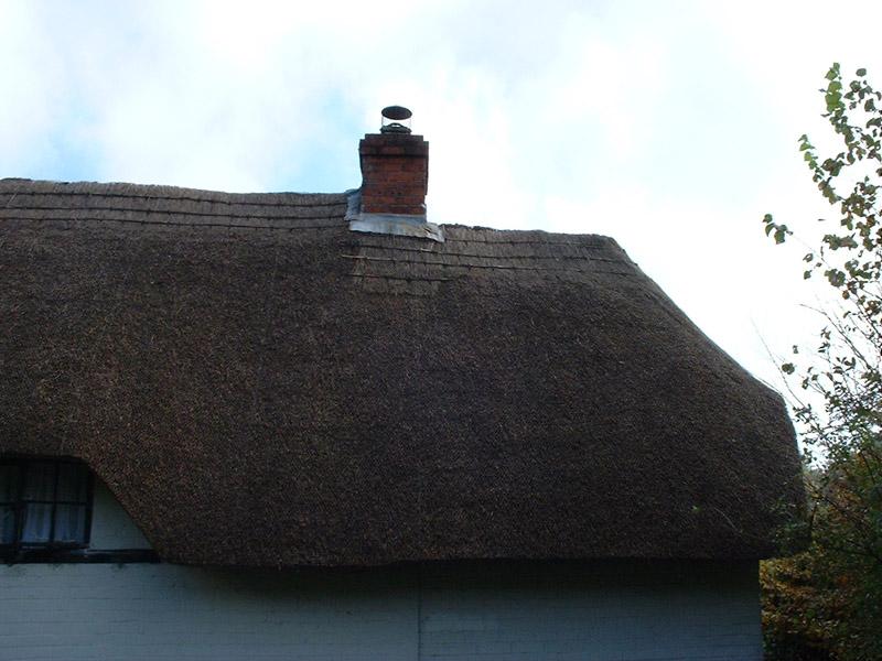 M Freeman roof 003
